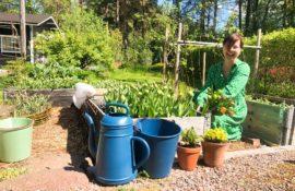 Anna Palasmaa jätti työnsä luokanopettajana ja ryhtyi täysipäiväiseksi puutarhuriksi
